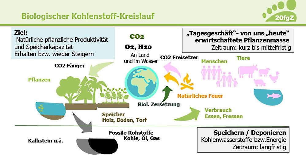 Kreislauf der Klimagase